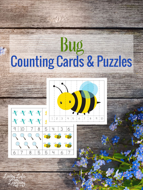 Bug Counting Cards