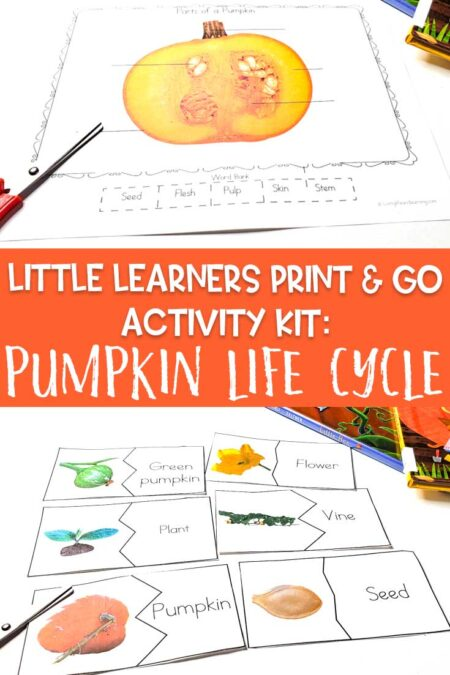 Little Learners print and go activity kit pumpkin life cycle