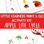Little Learners Print & Go Activity Kit: Apple Life Cycle
