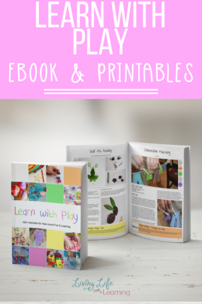 Learn with Play eBook and Printables