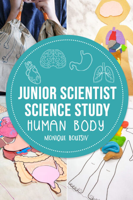 Junior Scientist Science Study: Human Body