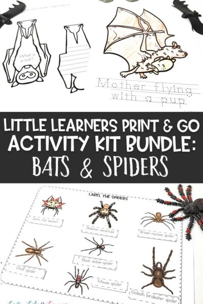 Little Learners print and go activity kit bats and spiders