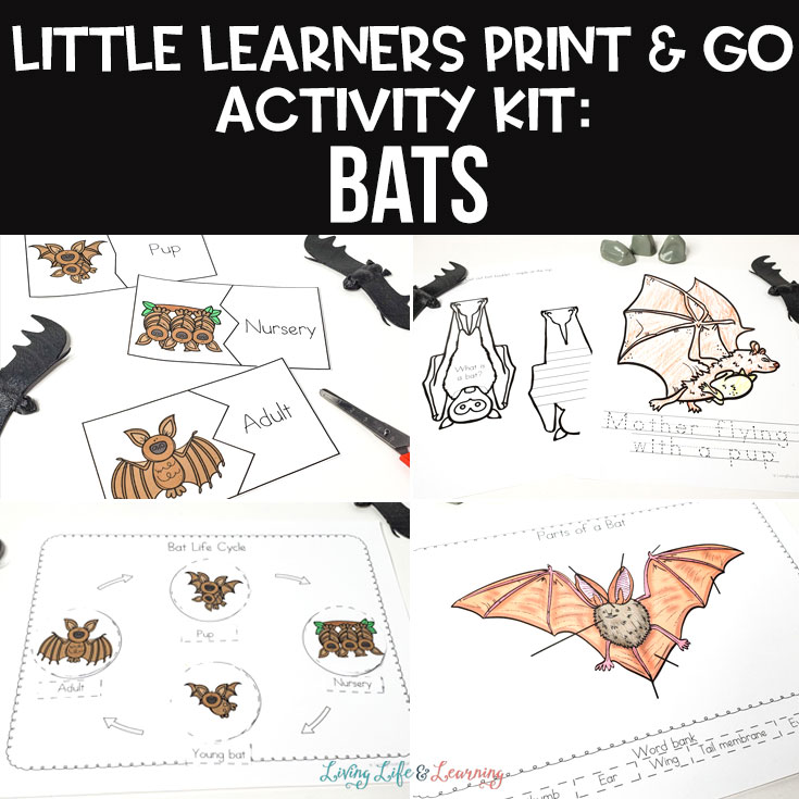 Little Learners print and go activity kit bats