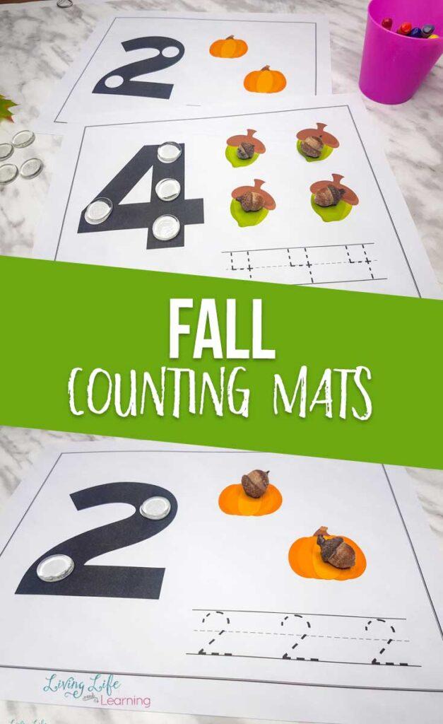 Fall Counting Mats