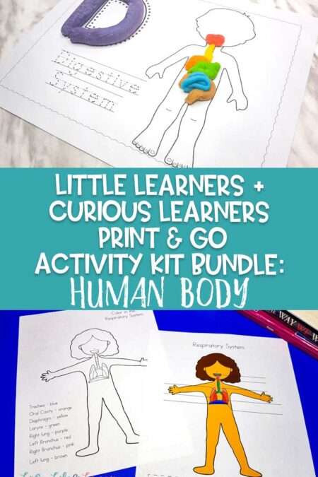 Curious Learners + Little Learners Print & Go Activity Kit: Human Body