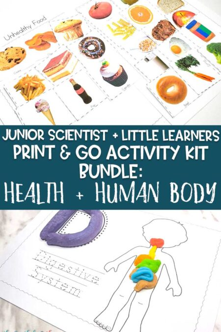 health and human body bundle