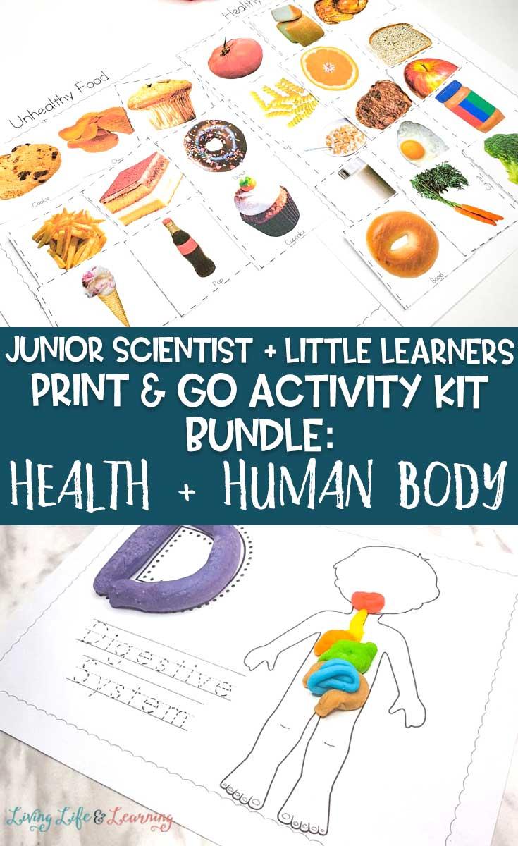 health and human body bundle