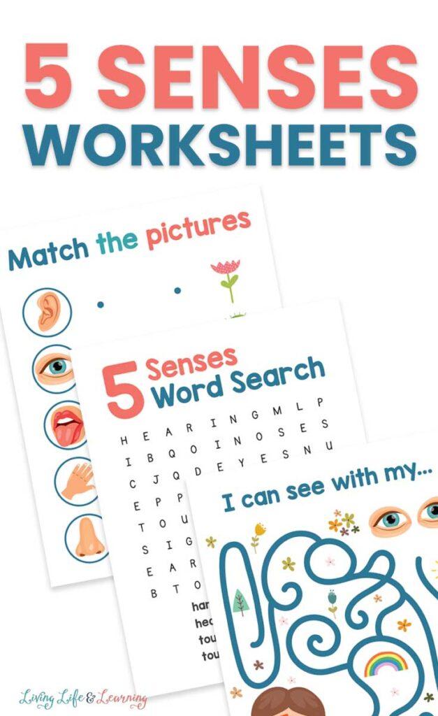 5 Senses Worksheets for Kids