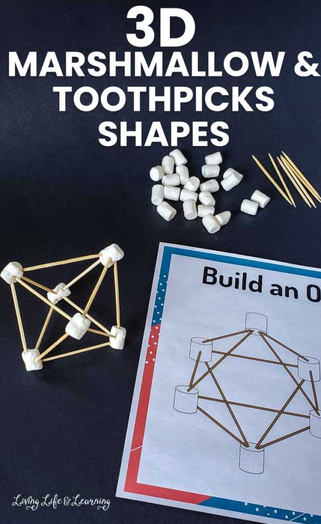 3D Marshmallow and Toothpicks Shapes