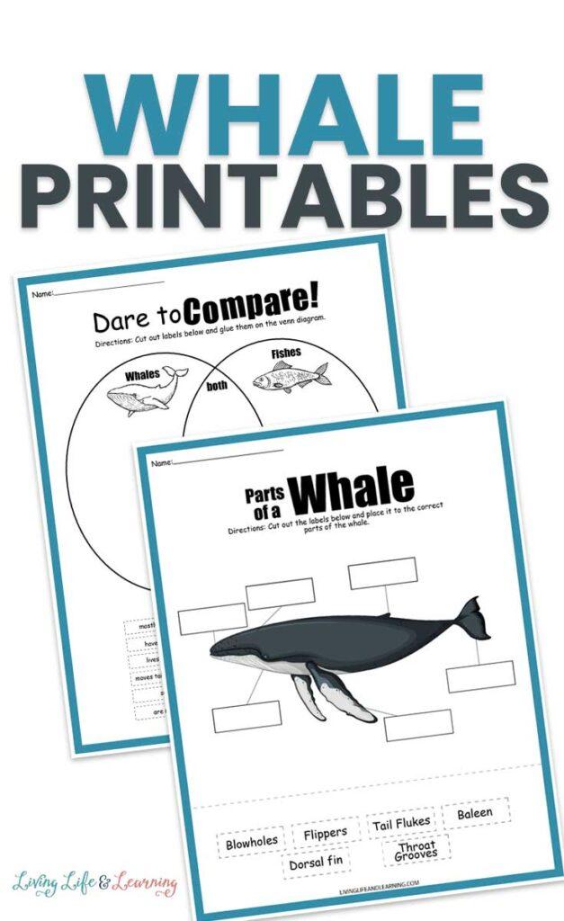 Whale Printables